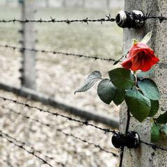 27 Gennaio:  Giorno della Memoria, per smuovere le coscienze!